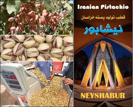 نیشابور قطب تولید پسته خراسان Iran pistachio Khorasan Neyshabur