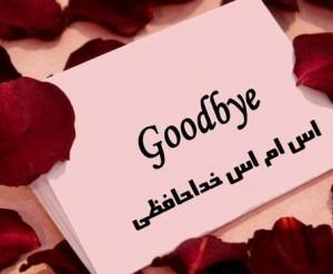 http://s5.picofile.com/file/8151466768/bye_www_sms30ti_ir10.jpg