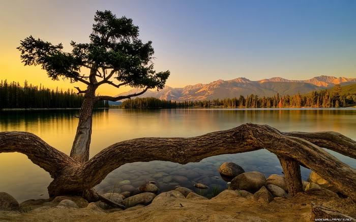 عکس زیبا از طبیعت غروب زیبا