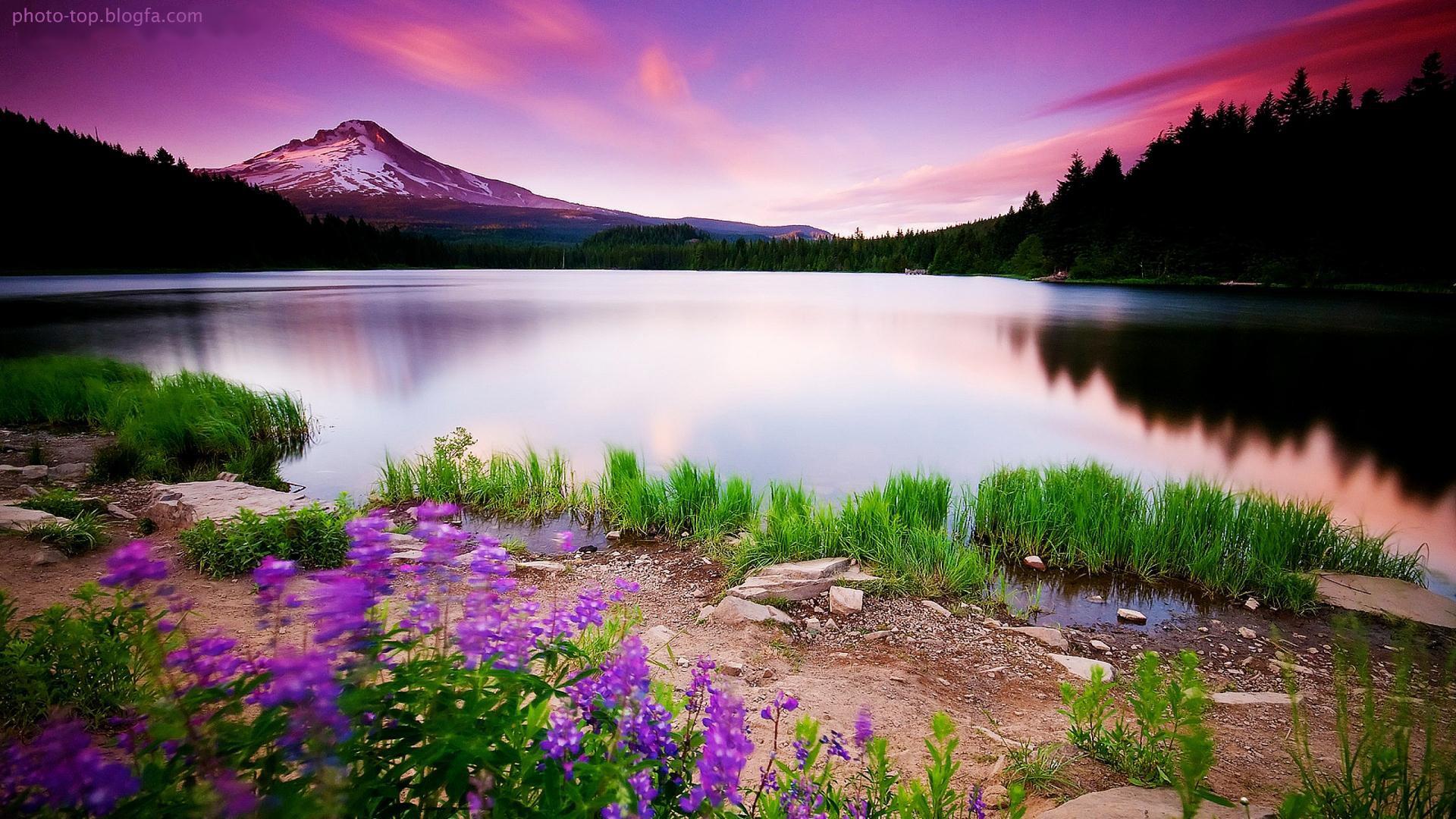 عکس طبیعت زیبا،تصاویر کیفیت بالا از منظره های زیبای طبیعی