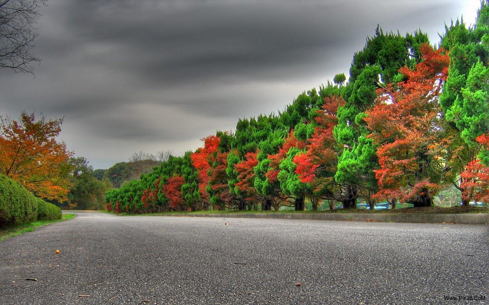 Amazing Nature  عکس طبیعت زیبا با کیفیت بالا