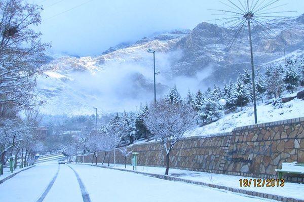 Image result for پارک غربی کرمانشاه