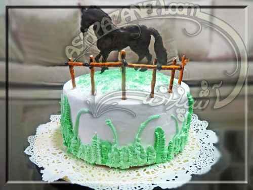 کیک تولد - سفره شیراز