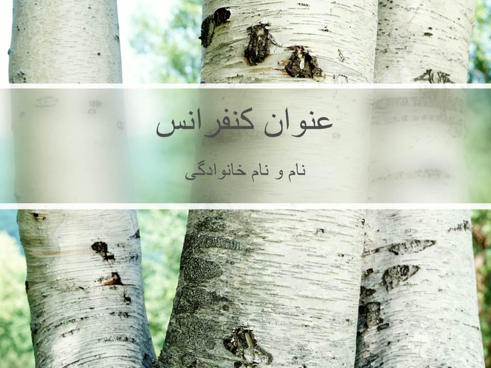 قالب پاورپوینت تنه درخت