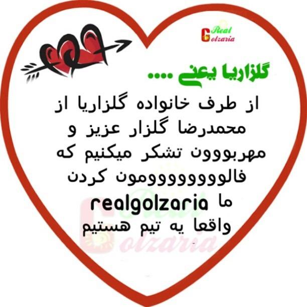 محمدرضا گلزار گلزاریا
