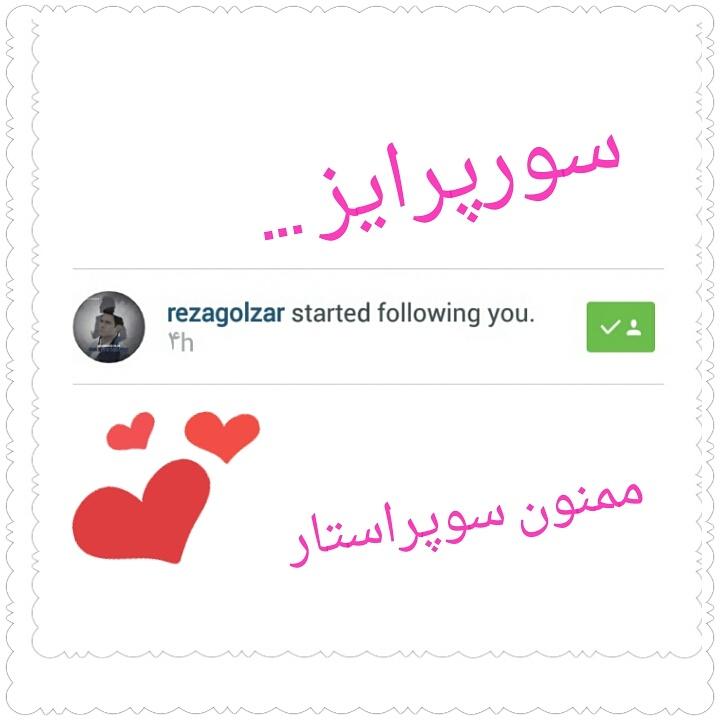 فالو شدن اینستاگرام گلزاریا توسط محمدرضا گلزار