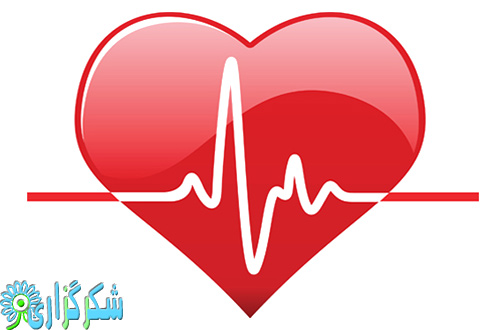 آنژیو گرافی - قلب مراقبت های بعد از عمل قلب - درمان بیماری - آنژیو گرافی