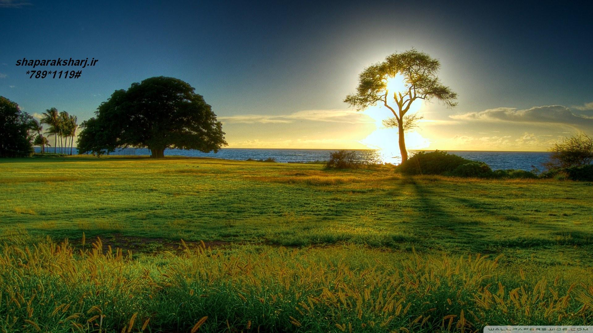 عکس-جالب-فنتزی-عاشقانه-طبیعت-زیبا