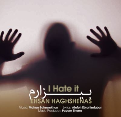 http://s5.picofile.com/file/8160062584/ehsan_haghshenas_bizaram.jpg