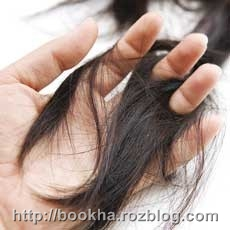 ریزش مو را کاهش دهید با این خوراکی ها