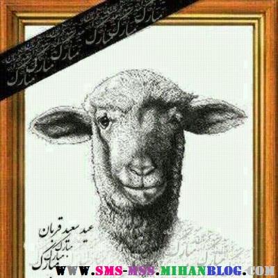 ترول خنده دار گوسفند،ترول خنده دار عید قربان