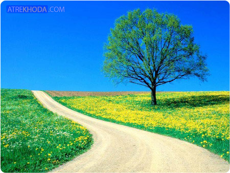 داستان کوتاه درخت و مسافر    www.atrekhoda.com