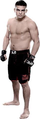 ))>پیش نمایش UFC 183 : Silva vs. Diaz <((