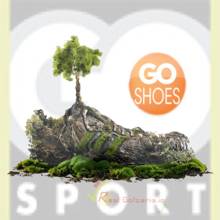 go sport محمدرضا گلزار