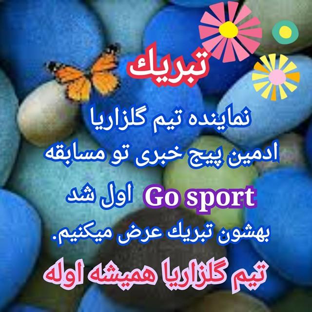 گو اسپورت محمدرضا گلزار