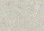 سنگ مرمریت سیلور ارسنجان
