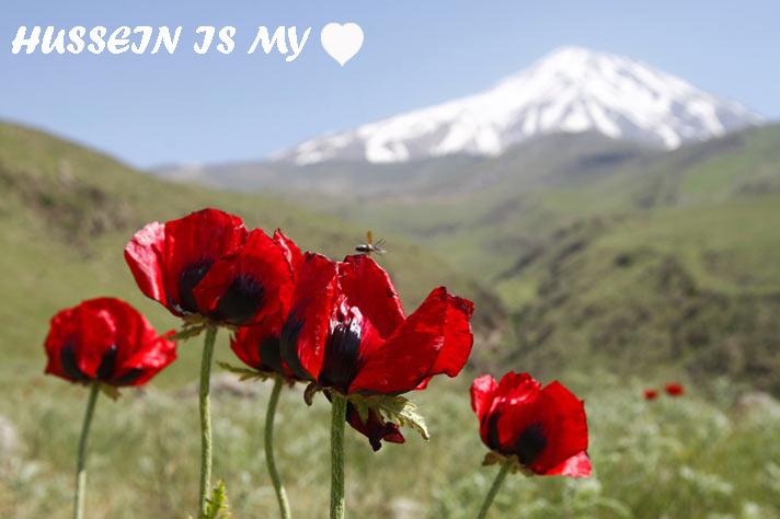 [تصویر: HUSSEIN_1.jpg]