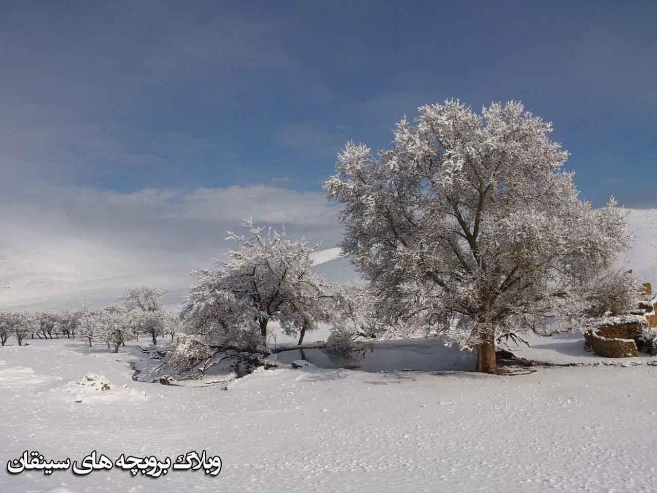 تصاویر برفی امروز تهران