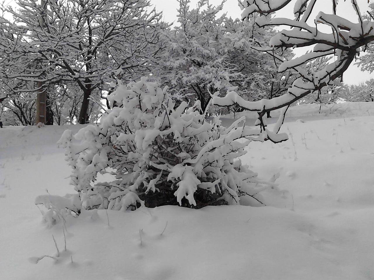 آبگرم+زمستان