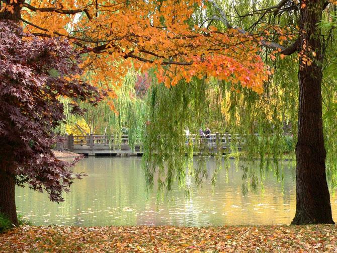 تصاویری از مناظر زیبا و آرامش بخش