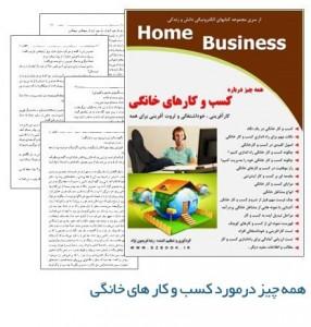 دانلود رایگان کتاب همه چیز درباره کسب و کارهای خانگی