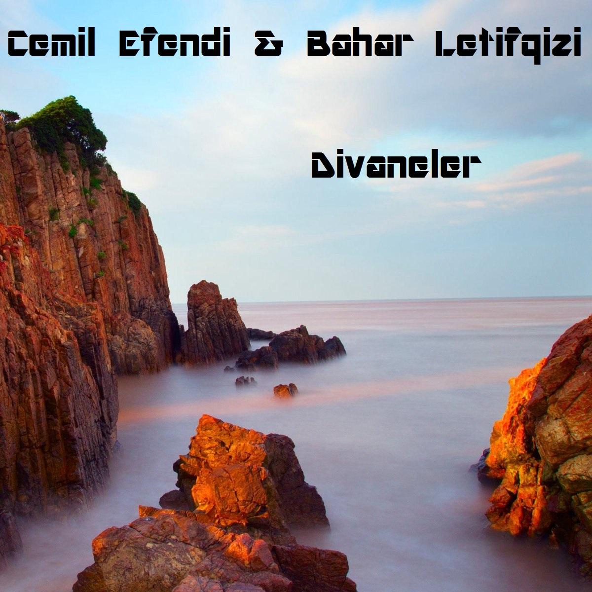 http://s5.picofile.com/file/8363185026/z5.jpg