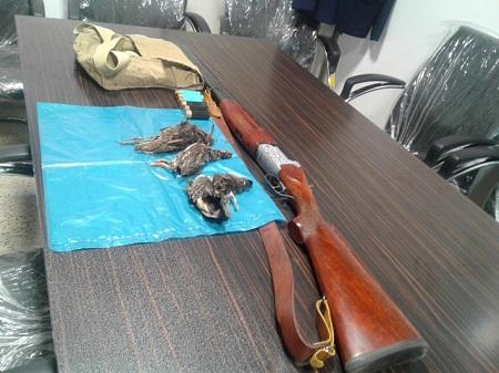 دستگیری شکارچی متخلف در آستارا