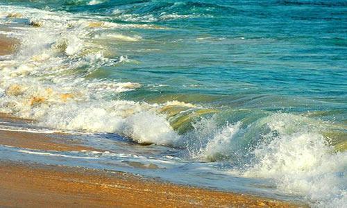 اکوسیستمهای دریایی بهسادگی به وضعیت طبیعی خود بازنمیگردند